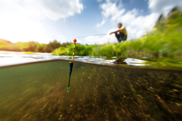 The future of South Florida's freshwater fishing
