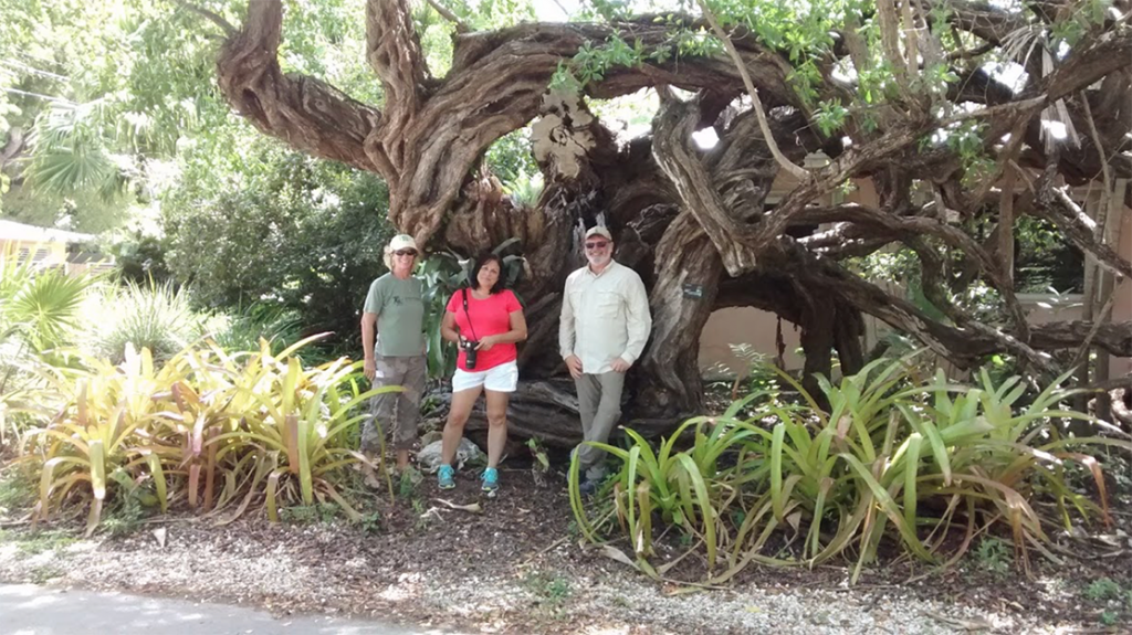 Group of people standing in front of a tree