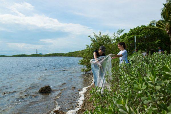 Students clean the bay at Baynanza