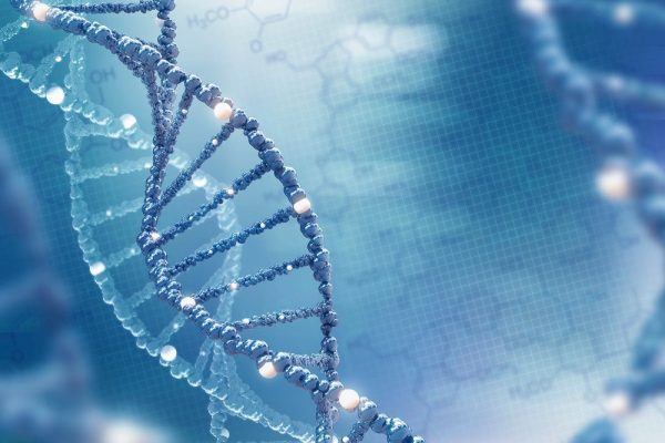 BSI faculty develop a non-invasive DNA adductomic approach to detect cancer