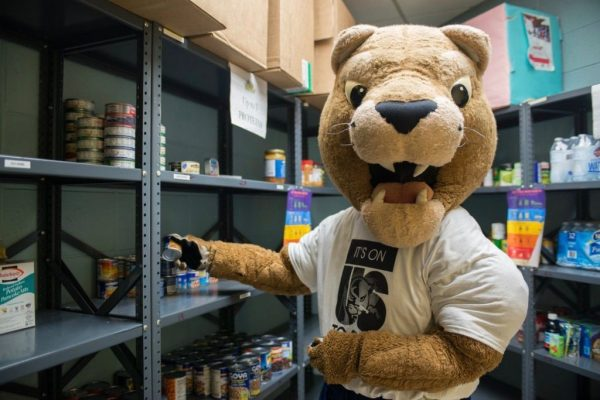 Support Ignite's Student Food Pantry Fund