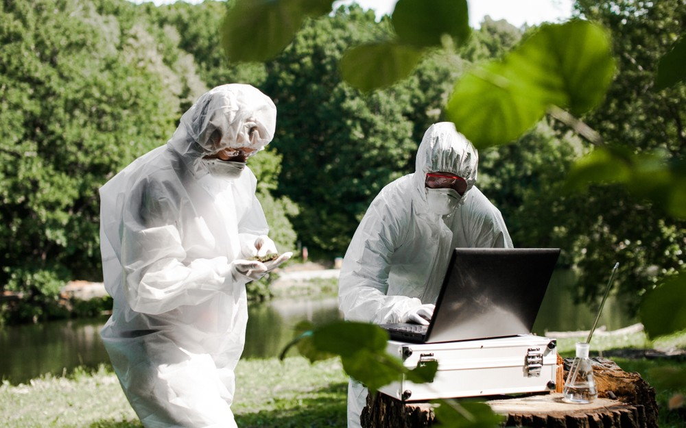 environmental scientists working in the field