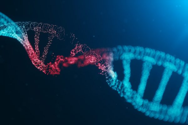Researchers develop a database of DNA adducts