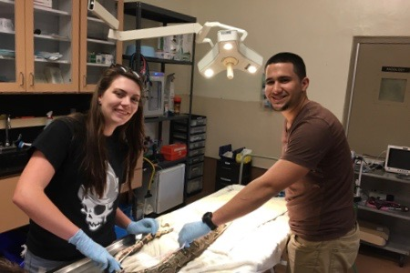 REU in conservation science at Zoo Miami