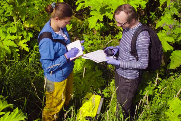 Become a project environmental scientist