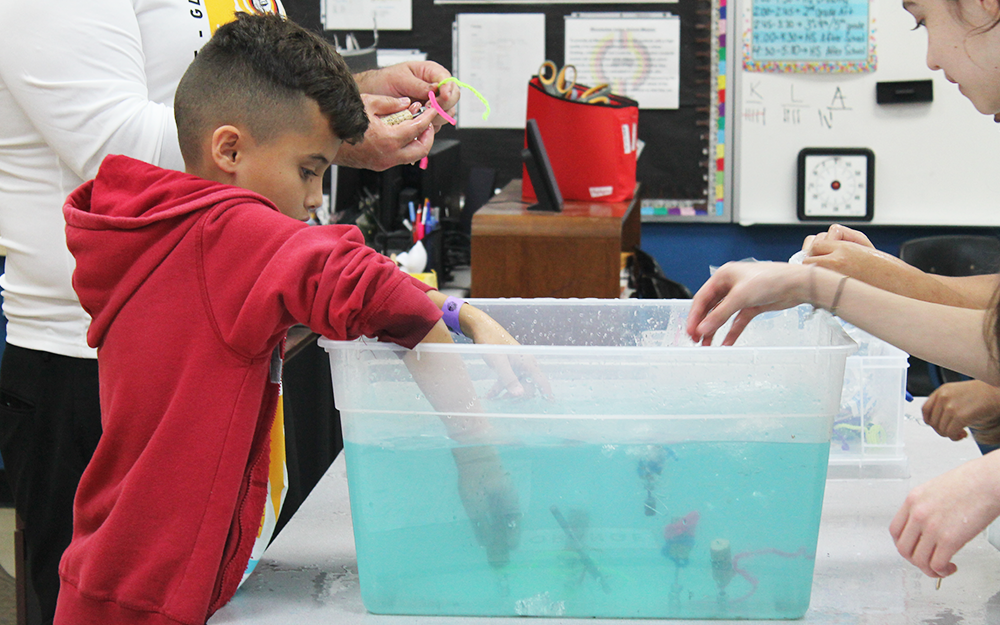 Student participating in plankton race