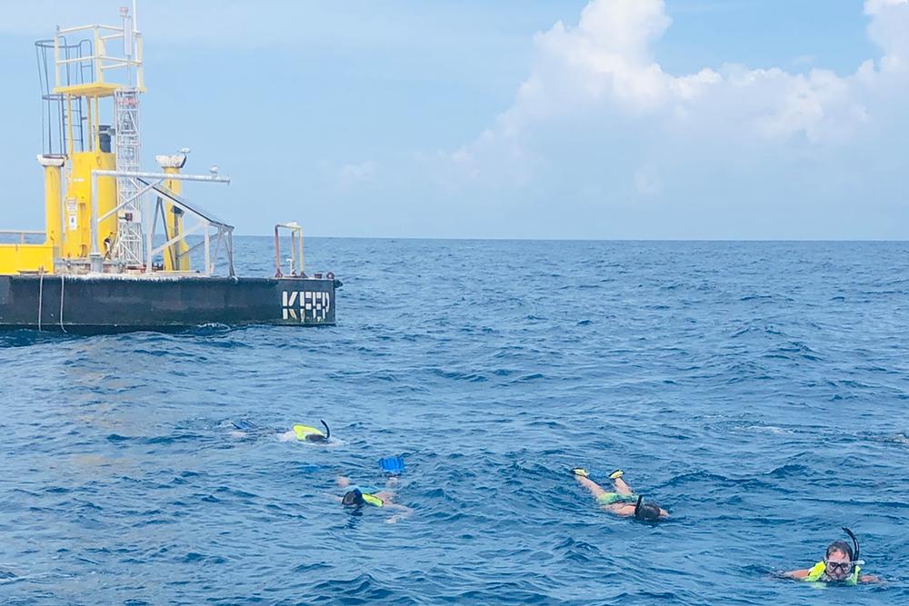 teachers snorkeling