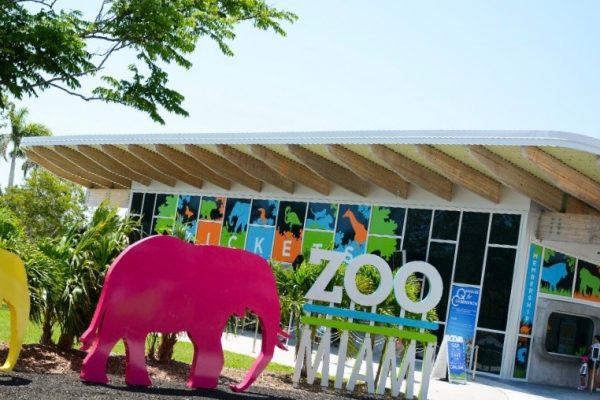 Become a program coordinator at Zoo Miami
