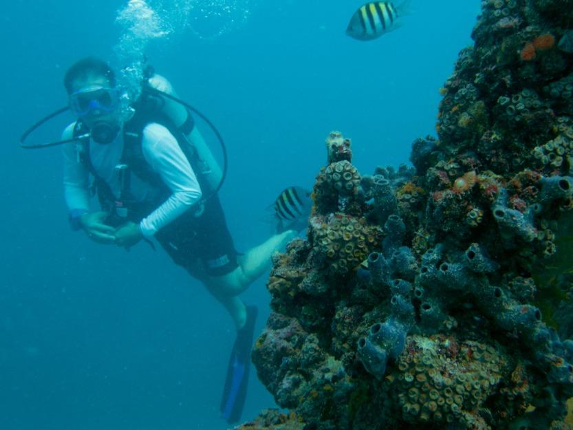 Athan diving