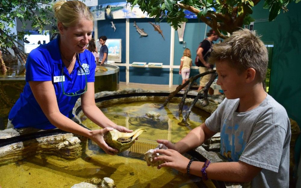 An intern showing a marine animal to a child at Rookery Bay.