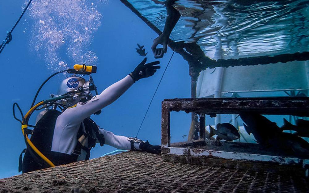NEEMO Aquanaut 1