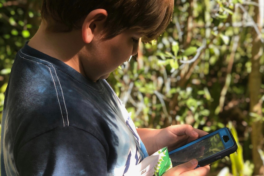 boy using iphone to identify species
