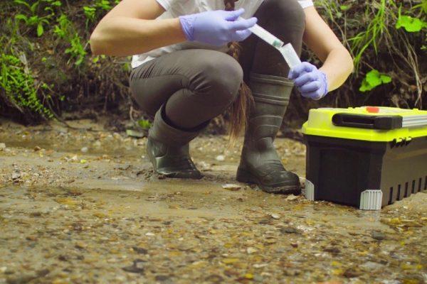 Environmental scientist intern at AECOM