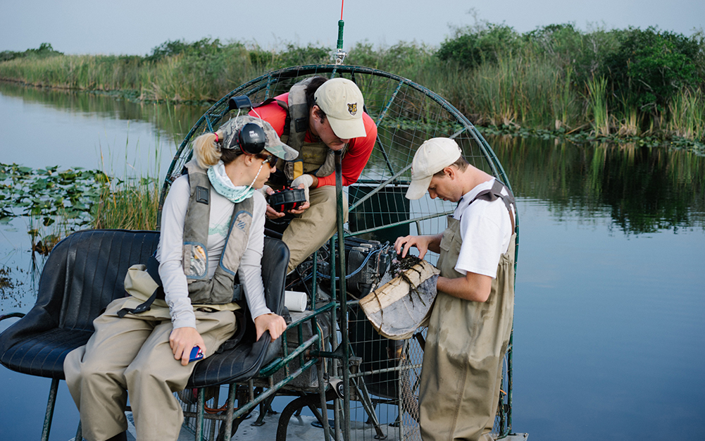 Researchers on airboat