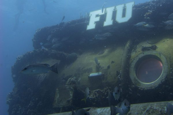 NASA astronaut spends time underwater