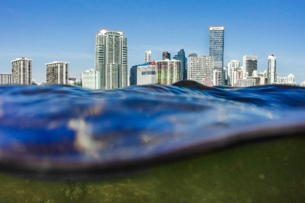 Marine experts discuss climate change impacts in South Florida