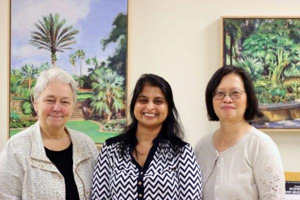 Increasing representation of underrepresented groups among STEM faculty members