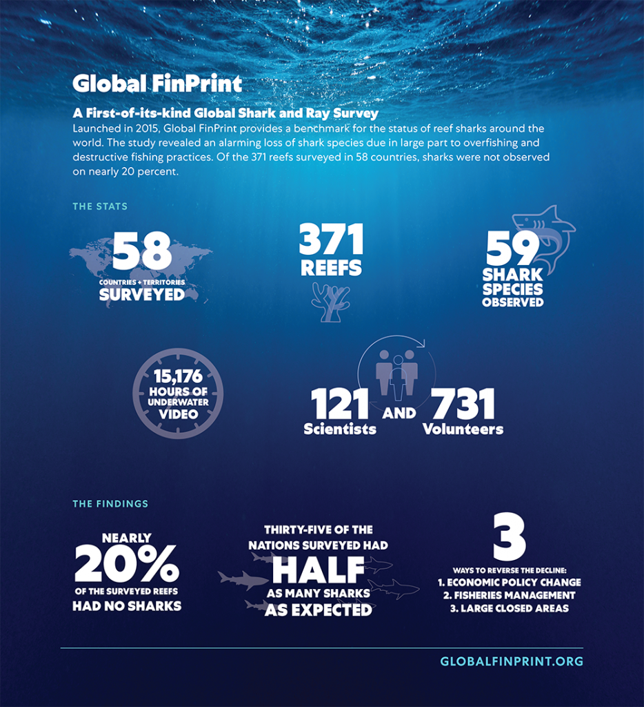 Global FinPrint A First-of-its-kind Global Shark and Ray Survey  Launched in 2015, Global FinPrint provides a benchmark for the status of reef sharks around the world. The study revealed an alarming loss of shark species due in large part to overfishing and destructive fishing practices. Of the 371 reefs surveyed in 58 countries, shares were not observed on nearly 20 percent.