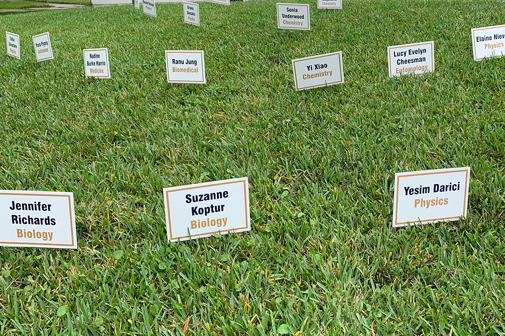 Signs on lawn
