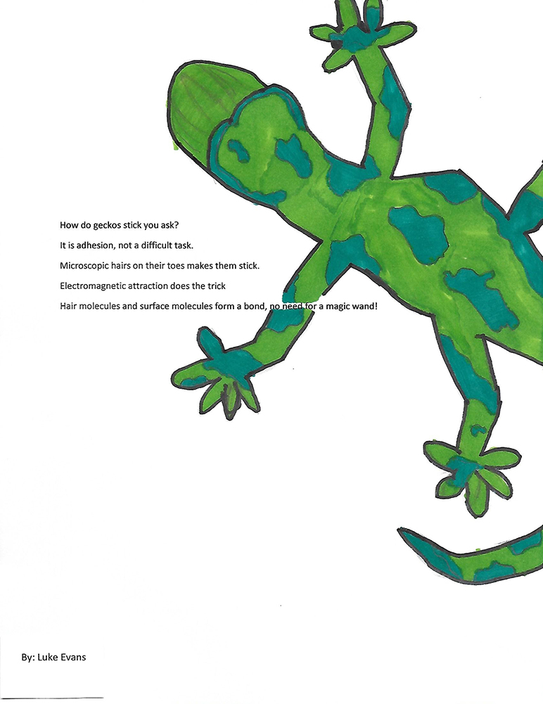 Luke Evans, 5th grade, Howard Drive Elementary, 2nd place National Chemistry Week 2020 poem