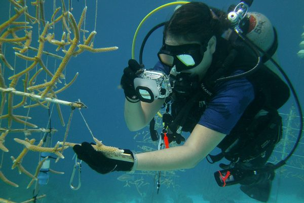 Student receives coral restoration scholarship