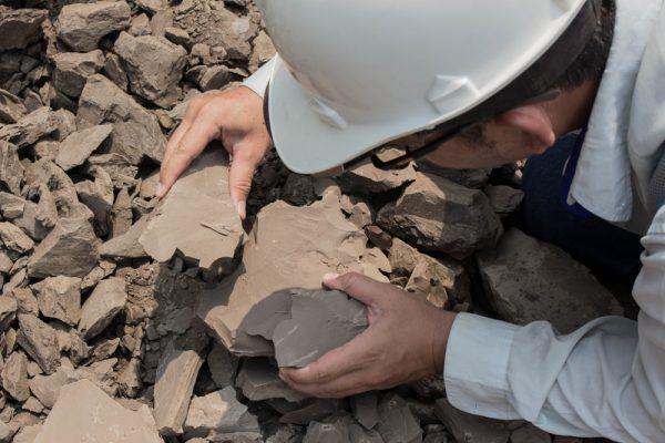 Southeastern Geological Society fieldwork grant