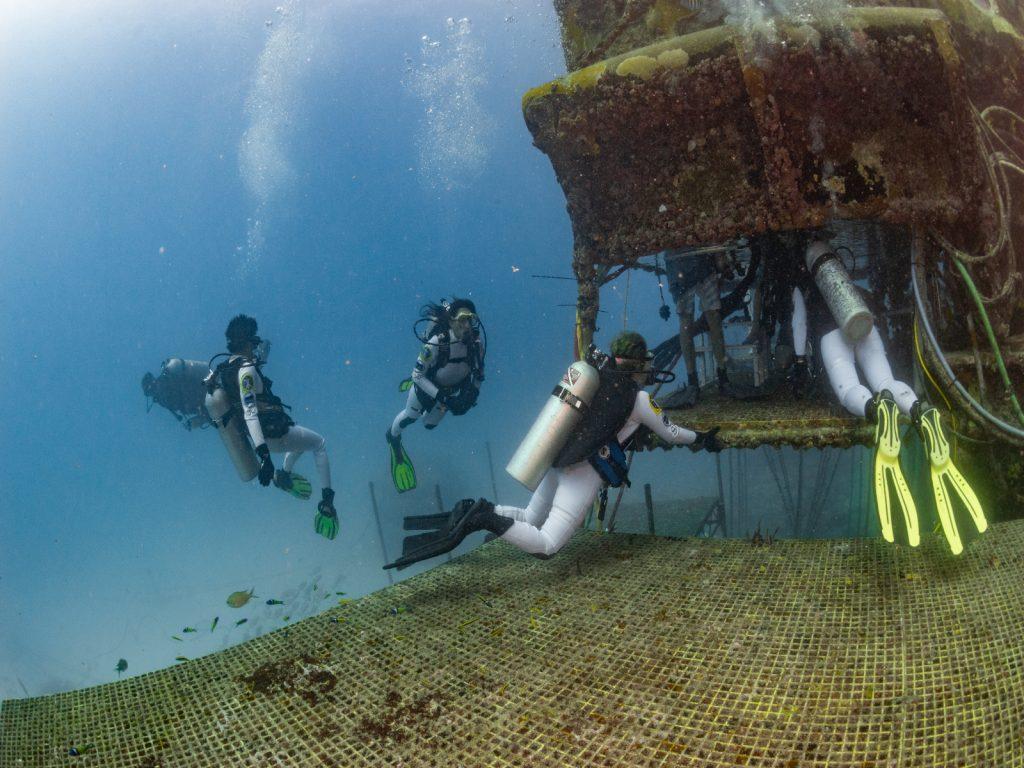 NEEMO 23 aquanauts entering the habitat.