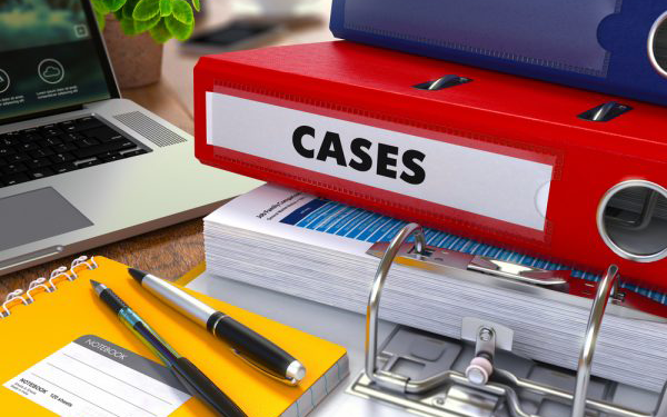 Case manager binder