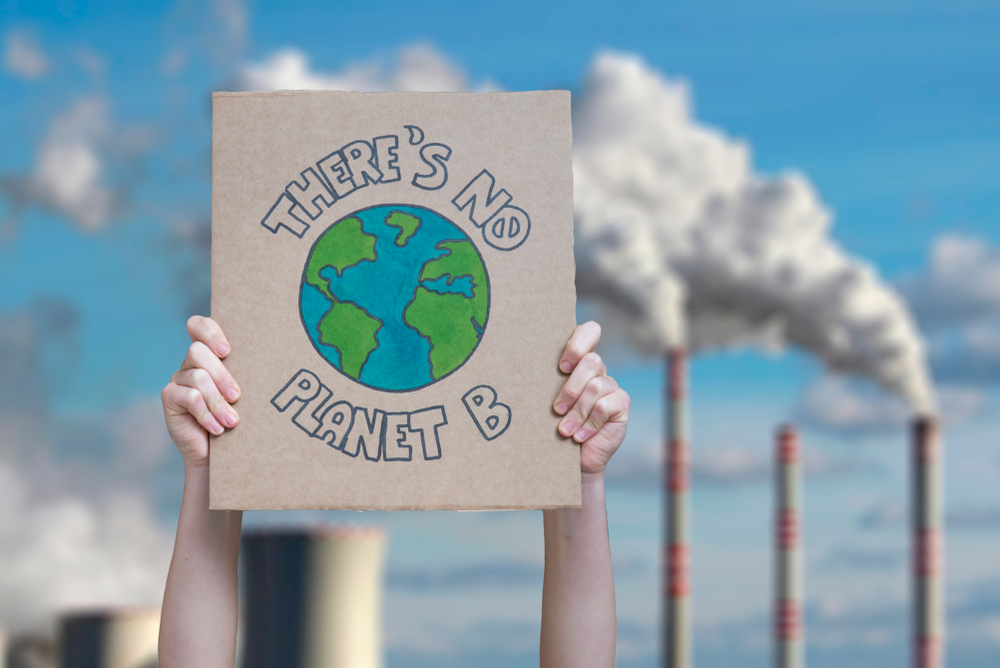 """Picture of person holding up a sign that reads """"there's no planet b"""" with a picture of earth in the middle."""