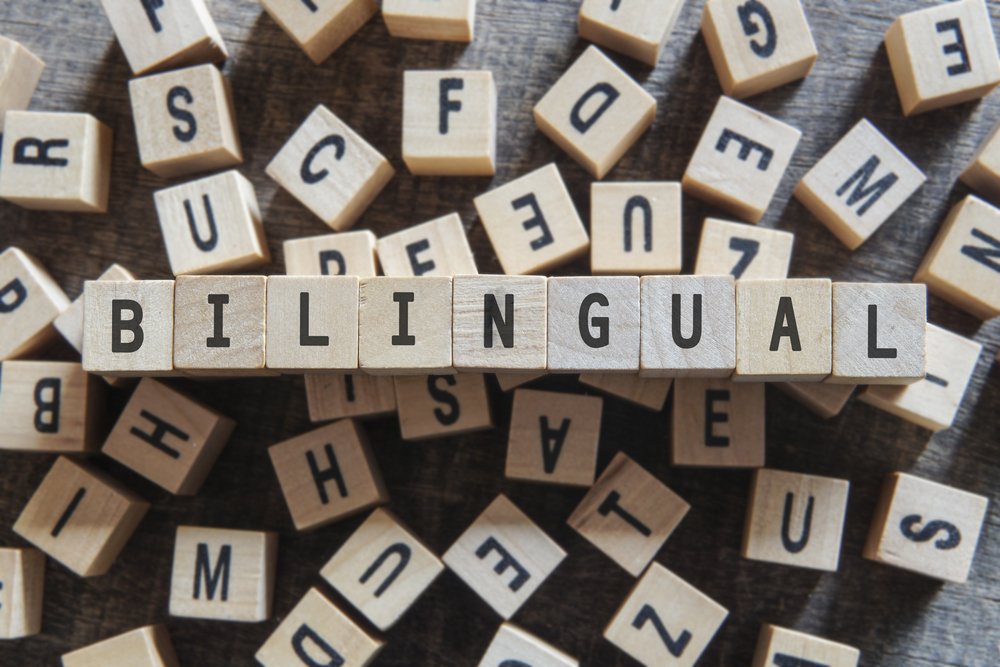 blocks spelling out bilingual
