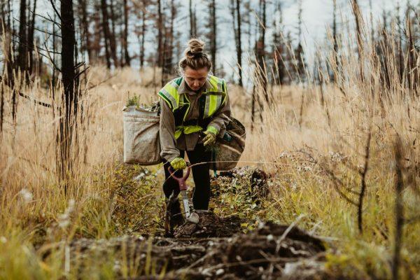 Institute for Regional Conservation seeks field technician