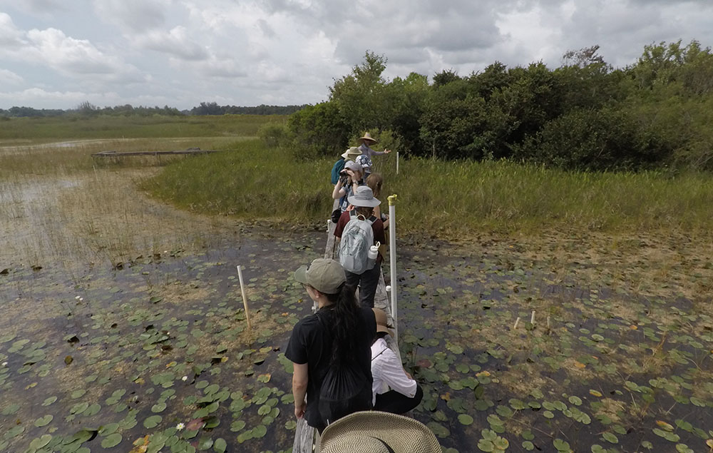 students out in the field