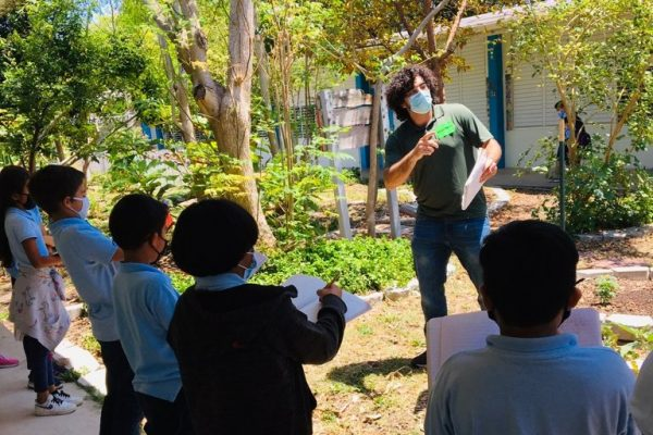 Graduate student awarded fellowship to study how mangroves react to coastal hazards